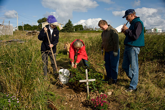 Elke, in red, planting a tree in honor of Ilse's birthday as I play my tin whistle and Yolanda helps with the digging.