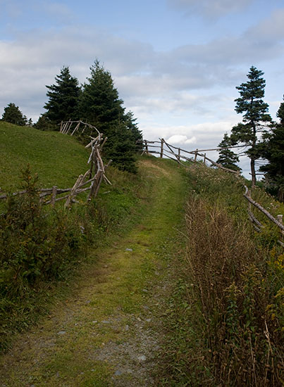 A section of the trail heading north from Torbay.