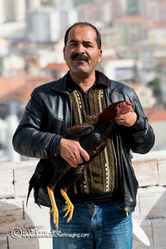 Kusadasi Man with Fighting Cock