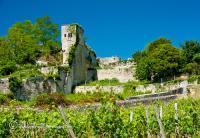 Traveling the Romantic Back Roads of Saint-Émilion and Bordeaux's Premium Vineyards